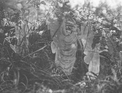 """Fairies and Their Sun-Bath,"" the fifth and last photograph of the Cottingley Fairies. (Public Domain)"