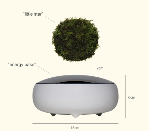 air bonsai 3